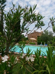 "Photo for Red Banditelle - ""Appartamento CAMPANULA"" - in a farmhouse with a swimming pool"