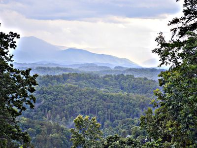 Photo for Close to Dollywood and Pigeon Forge. Pet friendly