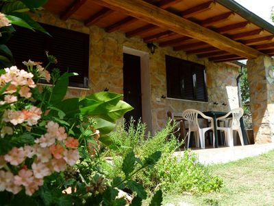 Photo for Apartment with swimming pool surrounded by the green of the Maremma