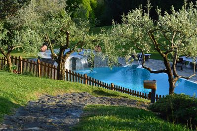Our pool among olive trees