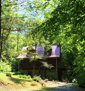 Lush woods, spacious, peaceful. Plenty of room to enjoy & explore inside & out!