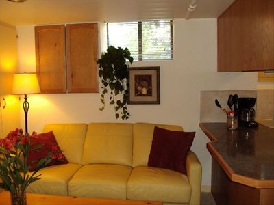 Cozy living room with electric woodstove and flatscreen TV...