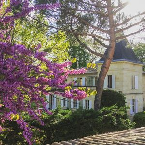 Photo for 10BR Villa Vacation Rental in Coutras, Gironde
