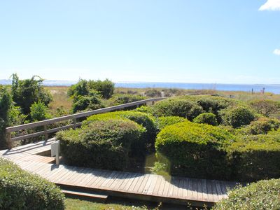 Photo for Beautifully renovated! Tastefully Decorated! On Pelican Beach! Pet Friendly!