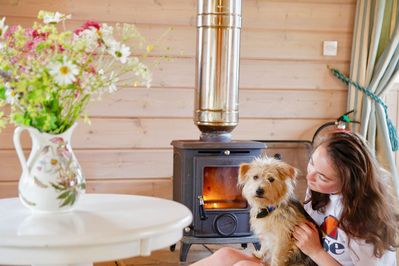 Curlew Lodge - a fabulous and very comfortable beachside log chalet with  stunning views and woodbur - Dumfries