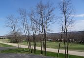 ~Stunning Views~3 BR North Ridge Townhome, Walk 2 Golf & Trails, BBQ, Garage~