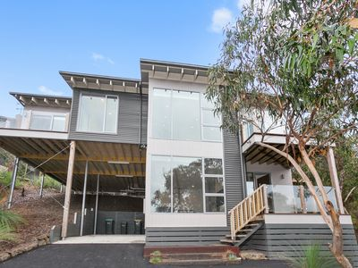 Photo for Treetop Escape Anglesea: Modern, Family Getaway, Bush Setting, Elevated Views