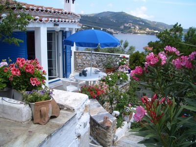 Photo for Luxury villa in flower paradise with private beach