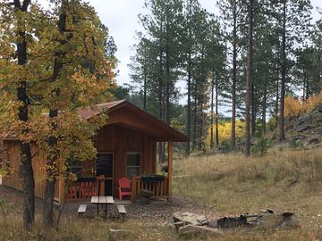 Beautiful Black Hills Cabin, Minutes to Mt Rushmore, Centrally Located, Peaceful