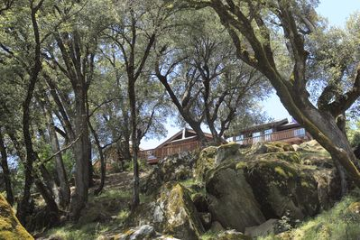 Casa Rio sits on top of a bluff with beautiful oak trees