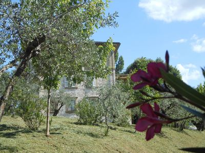 The olive grove and the house in summertime