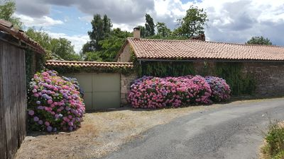 Photo for 17th century gite with exclusive use of a large private pool and garden