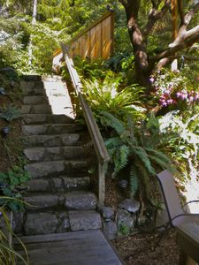 Stairs down to the Nest.
