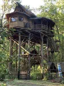 Toucan Treehouse surrounded by a 10 acre Jungle Garden Lagoon