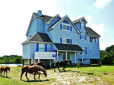 Photo for Available Canalfront Wild Horses, Kayaks Incredible Views