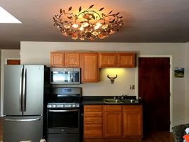 Photo for 2BR Apartment Vacation Rental in Lake City, Colorado