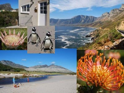 Photo for Ideally Located with Views - 100m to Beach, 1 h to Cape Town, South Africa
