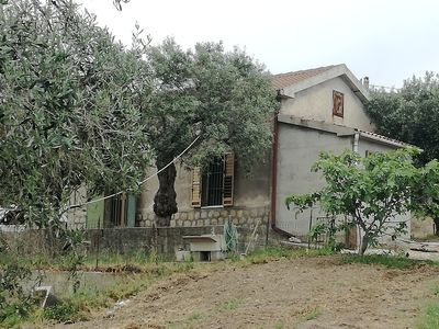Photo for La Casetta among the olive trees