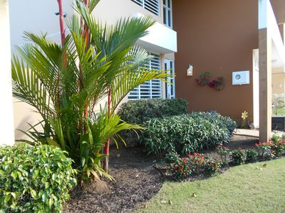 Photo for Private 4 Bedroom Home, Pool, close to the Beach and Rain-forest!