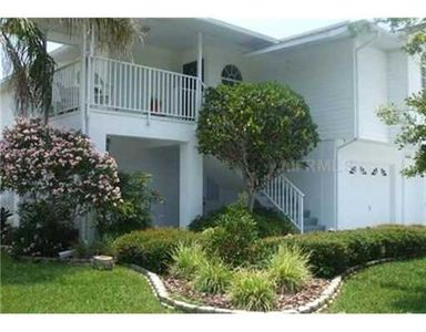 newer home with elevator- lush tropical landscaping