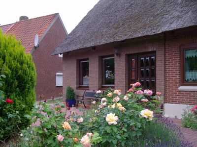 Photo for Holiday home for 5 guests with 85m² in Fehmarn OT Lemkendorf (96446)