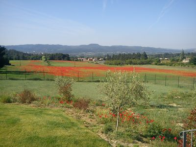 Photo for Independent apartment in 4000 sqm Luberon property