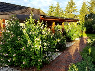 Photo for Cozy Apartment in Satow Kuhlungsborn & Doberan with garden