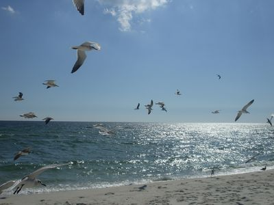 Photo for 2BR Townhome Vacation Rental in Pensacola, Florida