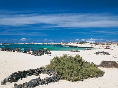 Photo for Holiday apartment Fuerteventura.