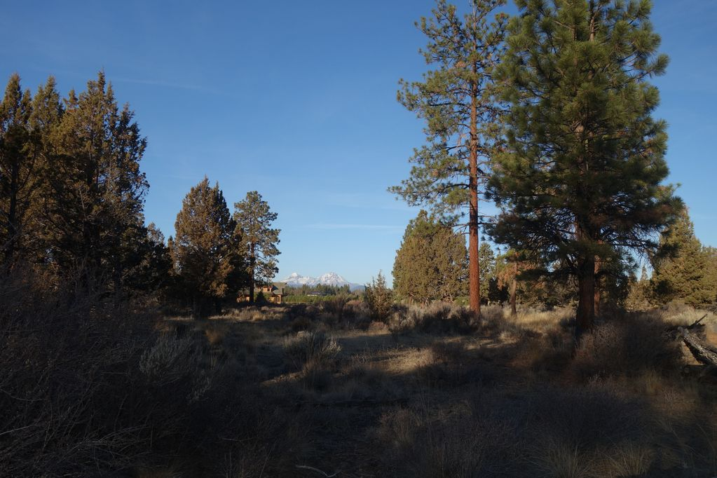 Private Country Setting 5 Mi  Nw of Bend with Mountain Views - Bend