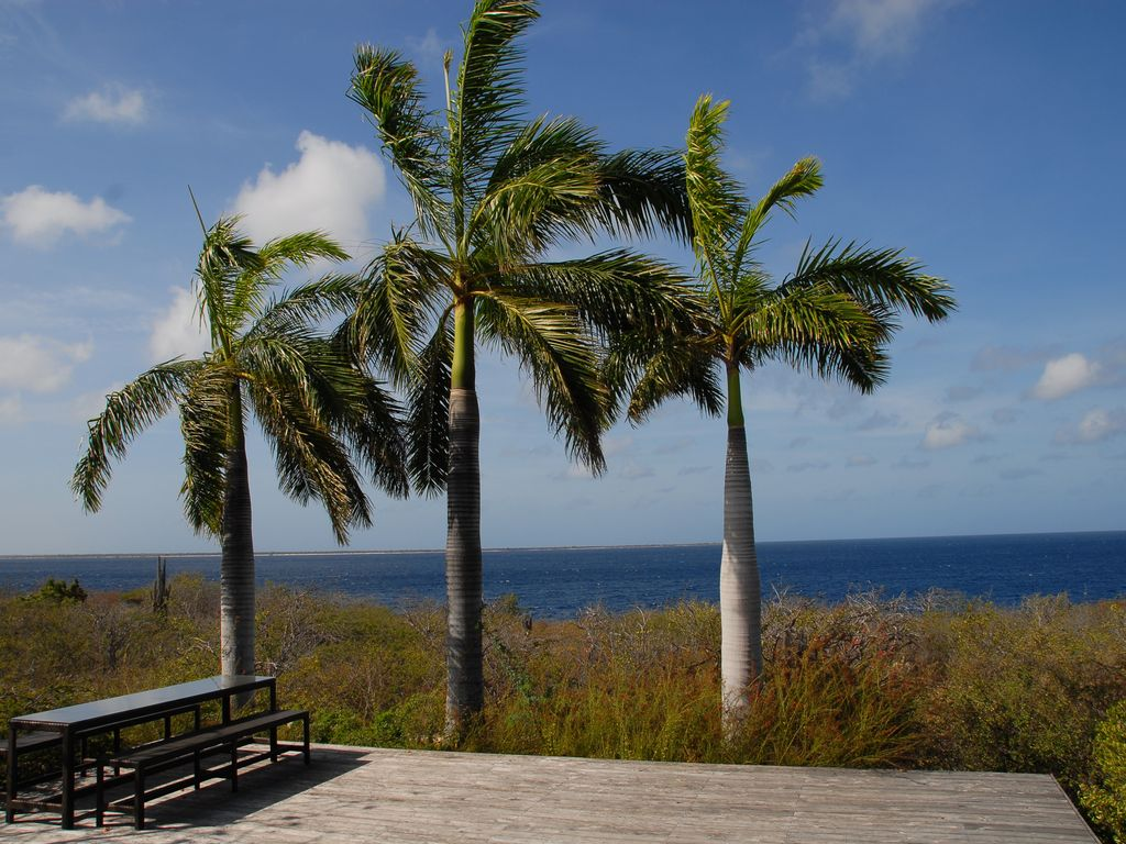Discounted Rates - Oceanfront Villa, Direct... - VRBO