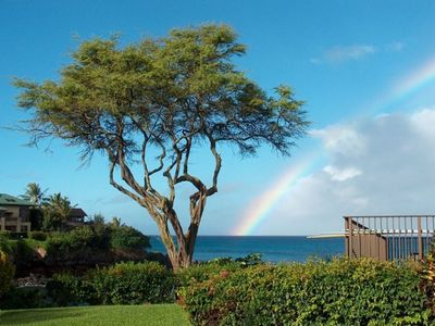 Photo for Napili Point Resort - Best Rate Anywhere - Last Minute Specials low as $125/nt