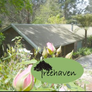 Photo for Treehaven - Enjoy watching and feeding the birdlife and looking for Lyrebirds