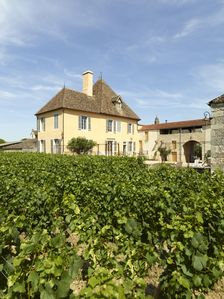Photo for Le Vieux Chateau overlooking the vines of Puligny Montrachet
