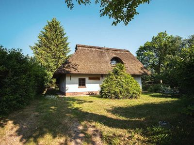 Photo for Thatched chestnut house (52m², 3 room, max 4 pers.) - thatched cottage near Kuehlungsborn