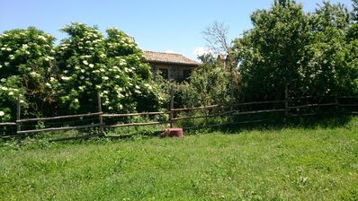 Photo for A HOUSE IN UMBRIA FOR YOUR FAMILY BETWEEN FRUIT TREES AND GREEN FIELDS