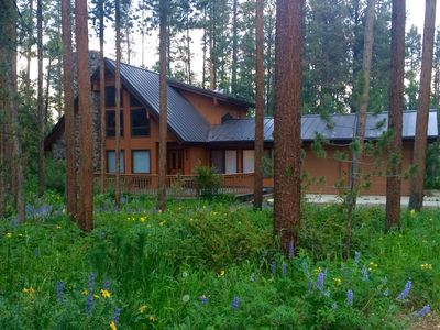 Photo for Cabin Nestled in the Woods, close to town!