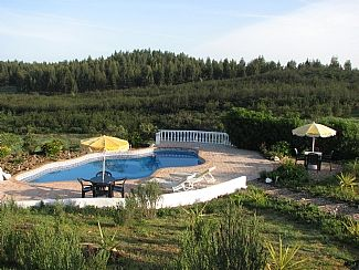 Private, secluded pool overlooking the forest