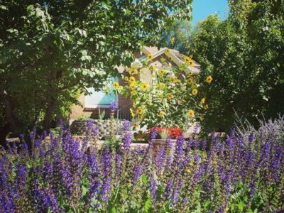 Photo for Charming cottage in historic neighborhood surrounded by fruit trees