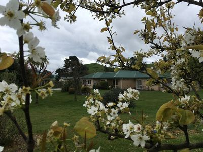 Photo for FarmStay Bed and Breakfast Accommodation Kinloch, Lake Taupo