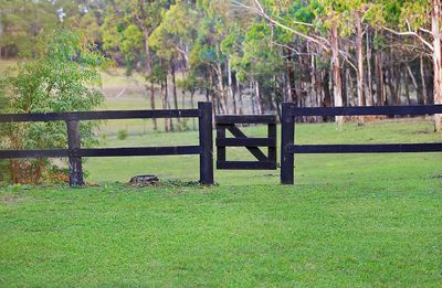 Photo for Yarrunga House.  Your country escape set on 5 acres.