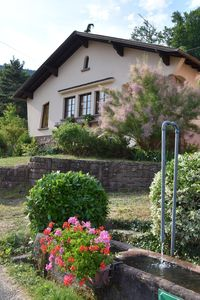 Photo for Gite de la Fontaine: cottage *** on the heights of Val d'Argent center Alsace