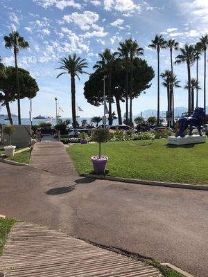 Photo for Grand Hotel Croisette - Studio Cannes 29 m2, terrace, 9th floor