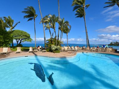 Photo for Wonderful Napili studio just steps to Napili Bay Beach!: Napili Shores D230