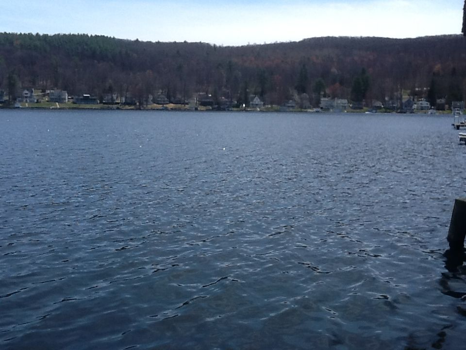 lake winola muslim singles Official lake winola homes for rent  see floorplans, pictures, prices & info for available rental homes, condos, and townhomes in lake winola, pa.