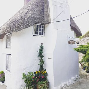 """Photo for Boutique """"Cute as a Button"""" Romantic Cornish Cottage. Featured in """"The Guardian"""""""