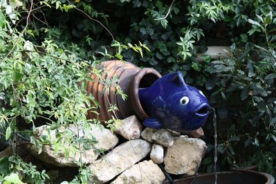 Quirky water feature