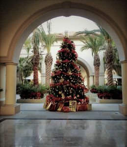 Photo for IMAGINE! Christmas in CABO!! . . .Fantastic 1 Bedroom, 2 Bath Suite. Sleeps 6