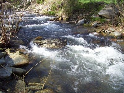 Rushing Trout-Stocked Creek: 10 acres, WiFi, & Hot Tub!