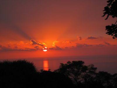 Photo for ABOVE KEALAKEKUA BAY $1,675/MONTH $80/10 DAYS BIG SUNSET & OCEAN VIEWS PRIVATE